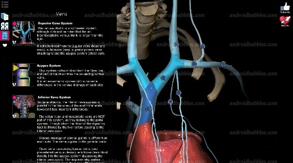 Anatomy-Learning-apk-download