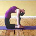 Does your Health needs Some Revitalization? Join the Best Yoga Classes